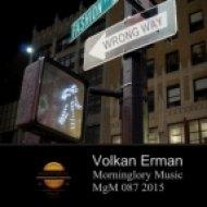 Volkan Erman - Wrong Way (Original Mix)