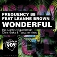 Frequency 88 Ft. Leanne Brown - Wonderful (Original Mix)