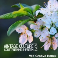Vintage Culture  - Eyes (Vee Groove Remix)