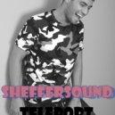Dima Kaminskiy - Teleport (SheffeRSounD Remix)
