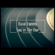 Basic Forces - Youdre The One (Original mix)
