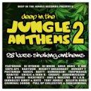 Gold Dubs - Nocturnal Confusion (DJ Hybrid Remix)