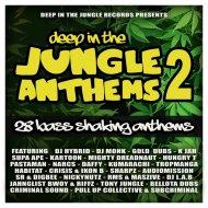 Tony Jungle - Look Into My Eyes (Original mix)