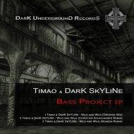DarK SkYLiNe, Timao - Wild and Wild (Original Mix)