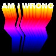 Etienne de Crécy  - Am I Wrong (The Beatangers & Boogie Vice Remix)