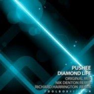Pushee - Diamond Life (Original Mix)