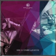 Rishi K. - Strange & Beautiful (Jero Nougues Delightful Remix)