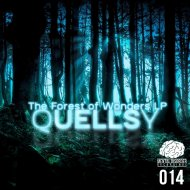 Quellsy, Reac - The Voice Of Heaven  (feat. Reac) (Quellsy VIP)
