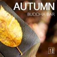 Francesco Digilio - The Autumn Sun  (Original Mix)