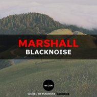 Blacknoise - Marshall (Original Mix)
