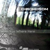 Chromosom - We Are All One  (Original Mix)
