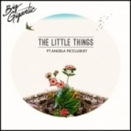 Big Gigantic - The Little Things (ft. Angela McCluskey)