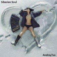AndreyTus - Siberian Soul vol 17 ()