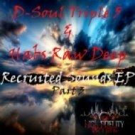 D Soul Triple 5, Habs Raw Deep - Resonance (Extended Mix)