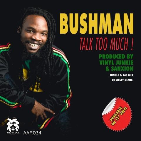 Vinyl Junkie & Sanxion feat. Bushman - Talk Too Much (Dj Westy Remix)