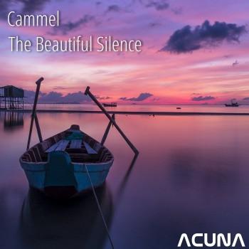 Cammel - Pain (Original Mix)