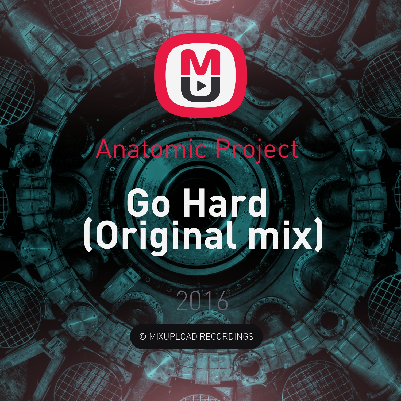 Anatomic Project  - Go Hard (Original mix)