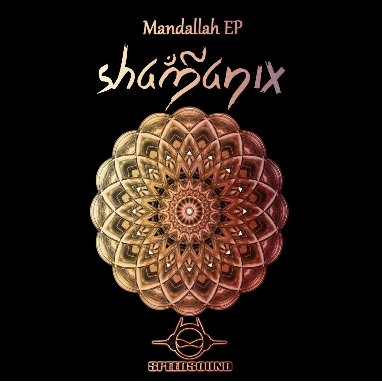Shamanix - O Que o Gorila Pensa  (Original Mix)
