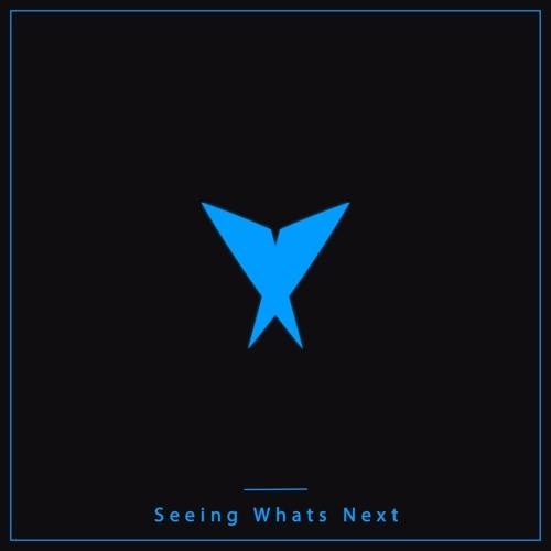Hollywood Principle - Seeing Whats Next (Valdone Remix)