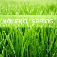 VALEKA - Spring (DnB Mix) ()