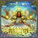 Phenotype - Les Couloirs Du Temps (Original Mix)