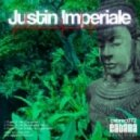 Justin Imperiale - Pulse Of Life (M. Caporale Remix)