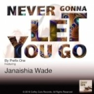 Prefix One Ft. Janaishia Wade - Never Gonna Let You Go (Original Soulful House Mix)