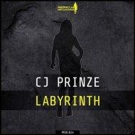 CJ Prinze - Labyrinth (Original Mix)