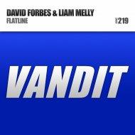 David Forbes & Liam Melly - Flatline (Original mix)