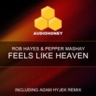 Rob Hayes & Pepper Mashay - Feels Like Heaven (Funk Fuel Remix)