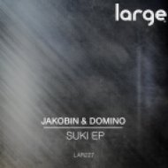 Jakobin & Domino - Tumblin (Original Mix)