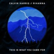 Calvin Harris feat. Rihanna - This Is What You Came For (Pink Panda Remix)