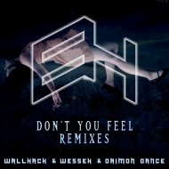 WallHack  &  WeSSeX  &  Daimon Dance  - Don\'t You Feel (Dayman Freeman Remix)