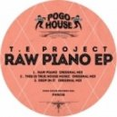 T.E Project - This Is True House Music (Original Mix)