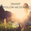 Dimant - Follow Me Down (Original Mix)