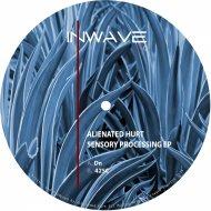 Alienated Hurt - 425C (Original Mix)