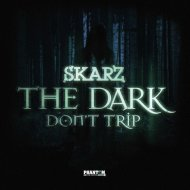 Skarz - The Dark (Original mix)