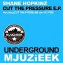 Shane Hopkinz - Bu Vibe (Original Mix)