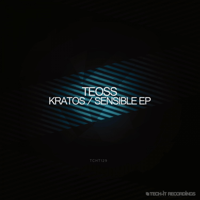 Teoss - Sensible (Original Mix)