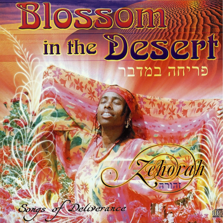Zehorah - Tivah (Hope) Interlude ()