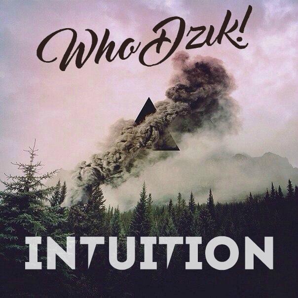 Who Dzik - Intuition (Original mix)