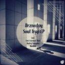 Drzneday - Soul Trap (Original Mix)