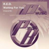 R.E.D. - Waiting For You (Original Mix)