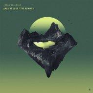 Jonas Saalbach - Delusion (Philipp Kempnich Remix)