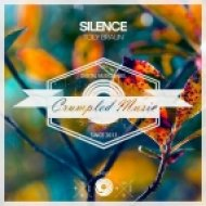 Toly Braun - Silence (Original Mix)