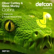Oliver Cattley & Steve Morley - Cobra (Perrelli & Mankoff Remix)