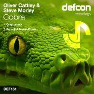 Oliver Cattley & Steve Morley - Cobra (Original Mix)