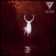 Vessel & Prime - Lost (Bonus Track)