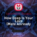 Calvin Harris, Disciples - How Deep Is Your Love (Mate Allready Remix)