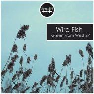 Wire Fish - Imaginary Zugzwang (Original Mix)